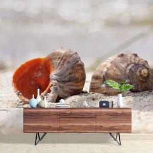 Painel Fotográfico Dcorando Conchas