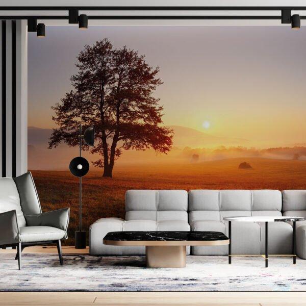 Painel Fotográfico Dcorando Nevoeiro